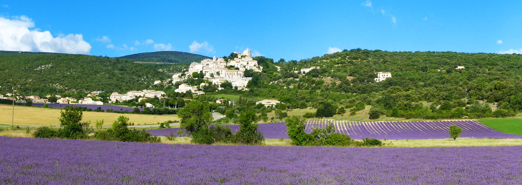 A charming rentals and guest rooms in haute provence la for Haute provence